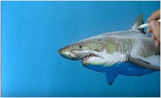 Come disegnare uno squalo con tecniche miste