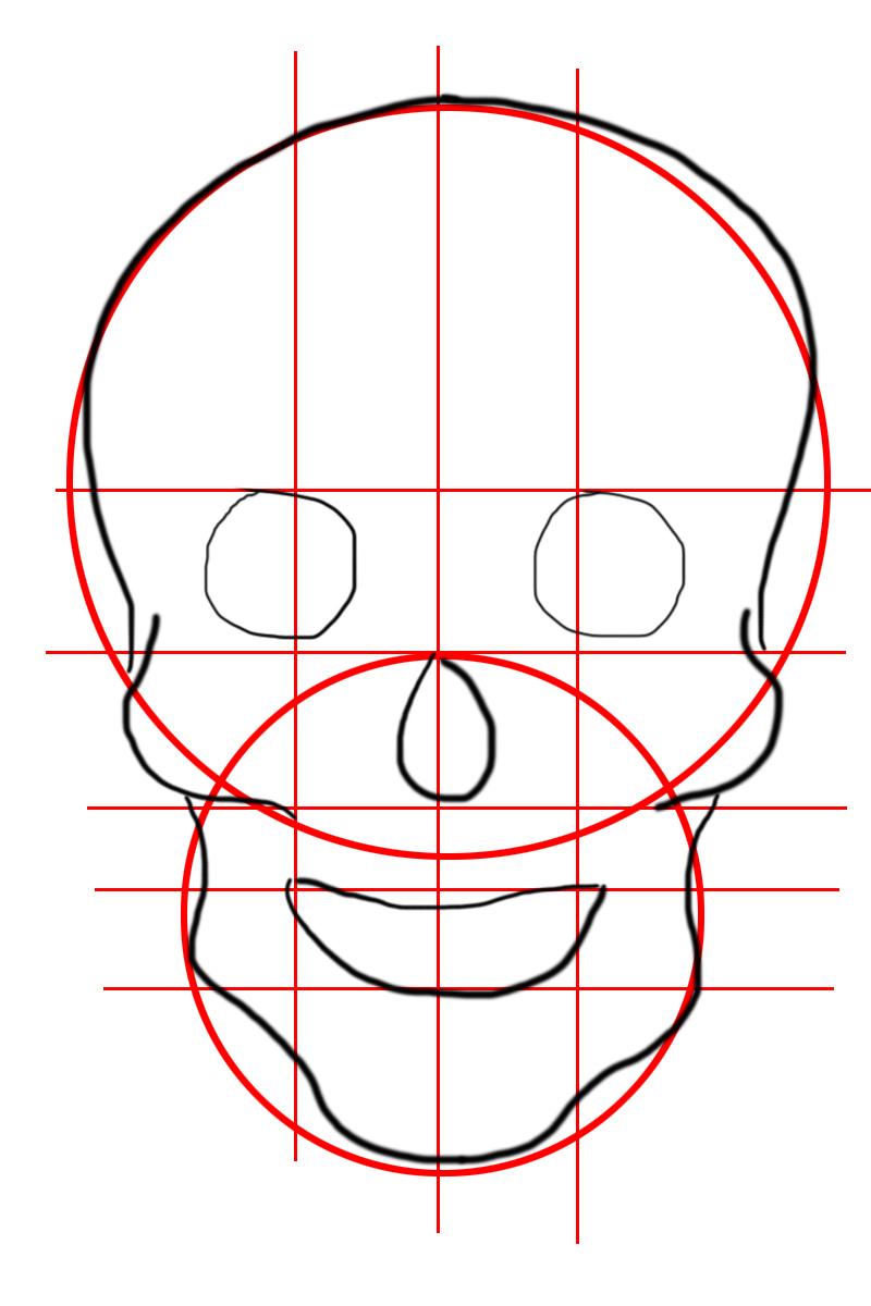 Come disegnare un teschio perfetto per halloween - Come disegnare immagini di halloween ...